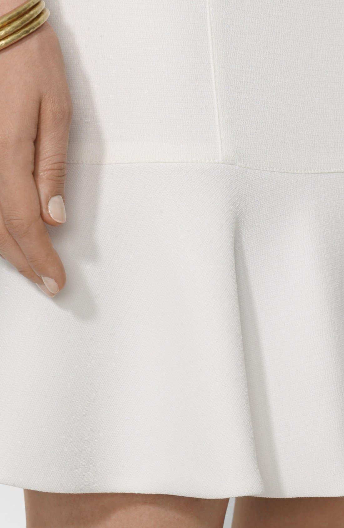 Alternate Image 3  - Lauren Ralph Lauren Sleeveless Drop Waist Dress