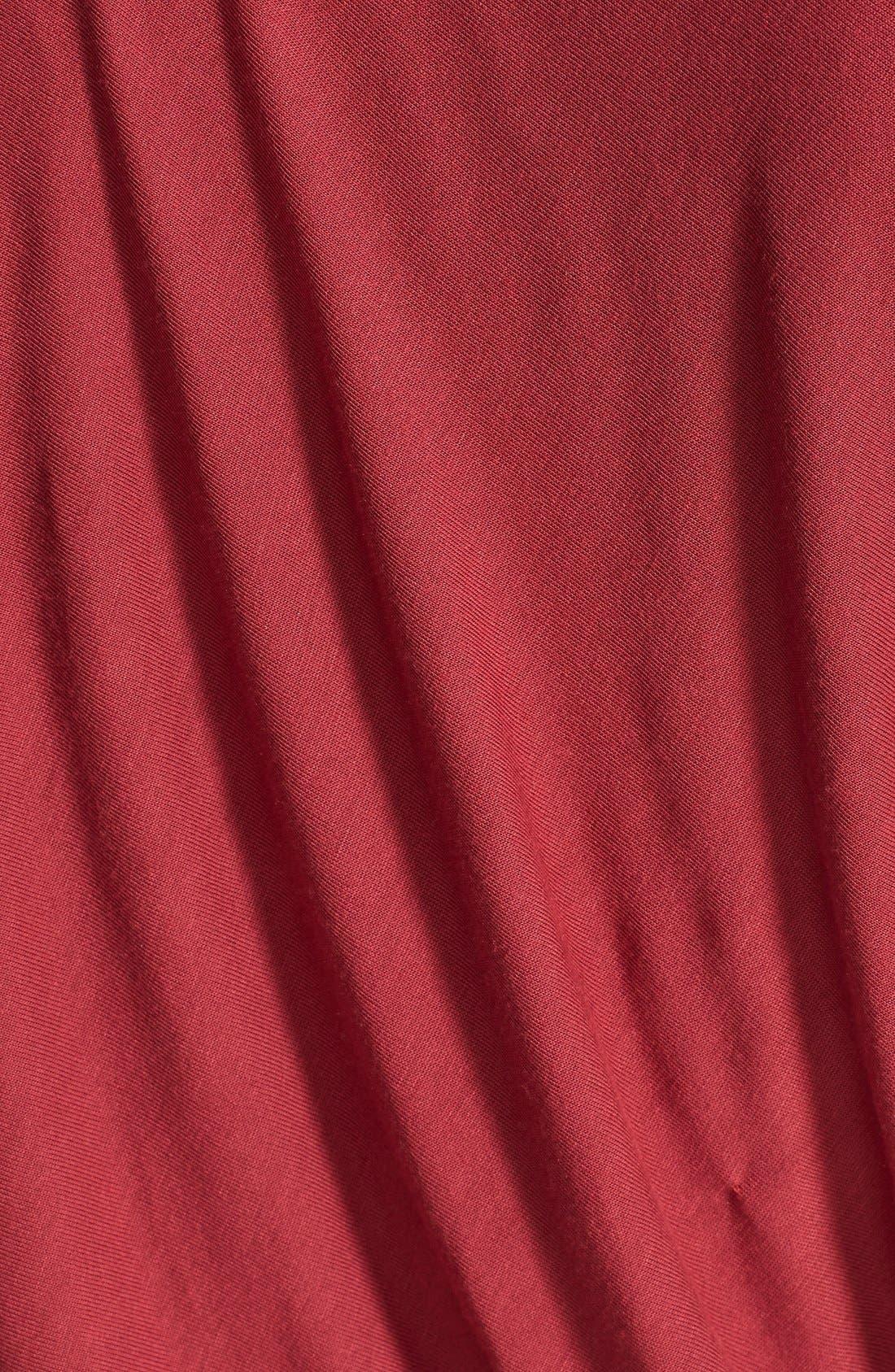 Alternate Image 3  - Velvet by Graham & Spencer Blouson Dress