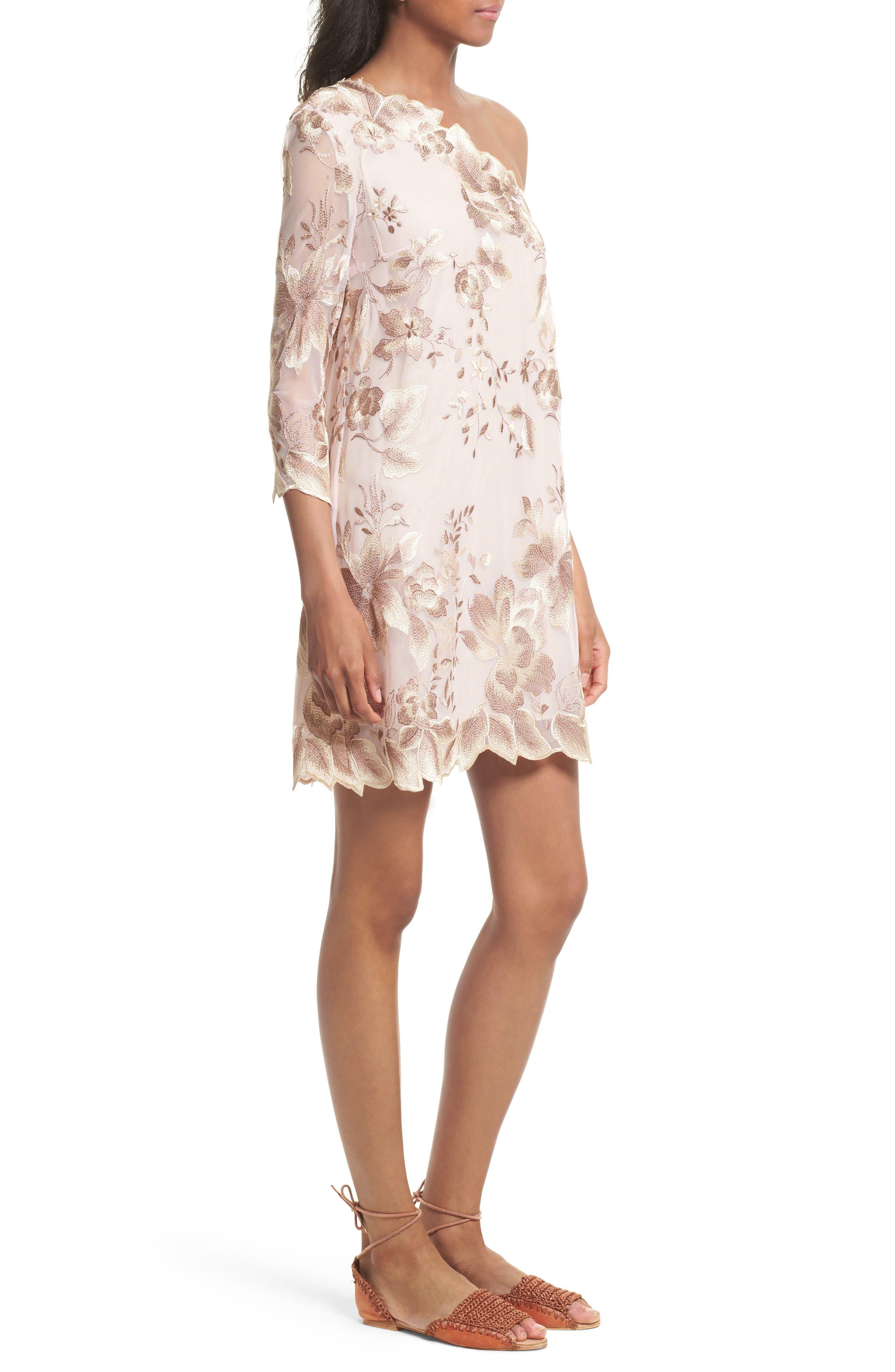 Alternate Image 3  - Free People Rosalie Embroidered Minidress