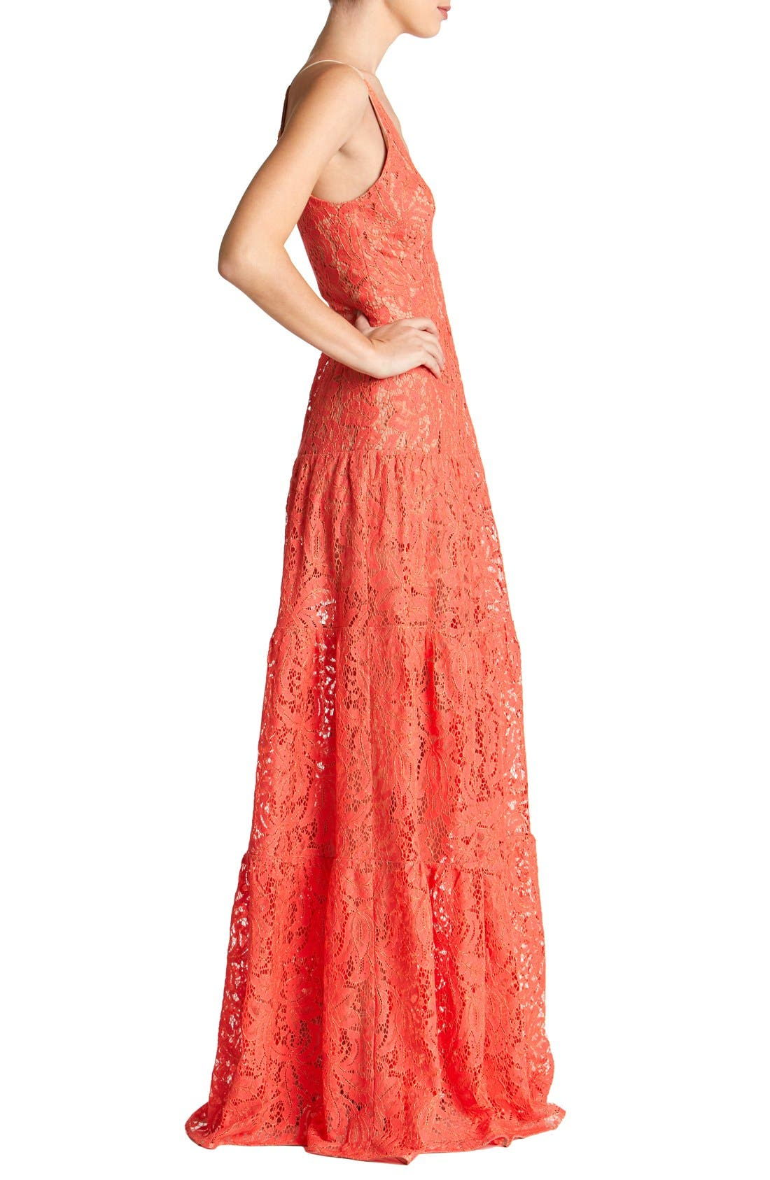 Alternate Image 3  - Dress the Population Melina Lace Fit & Flare Maxi Dress