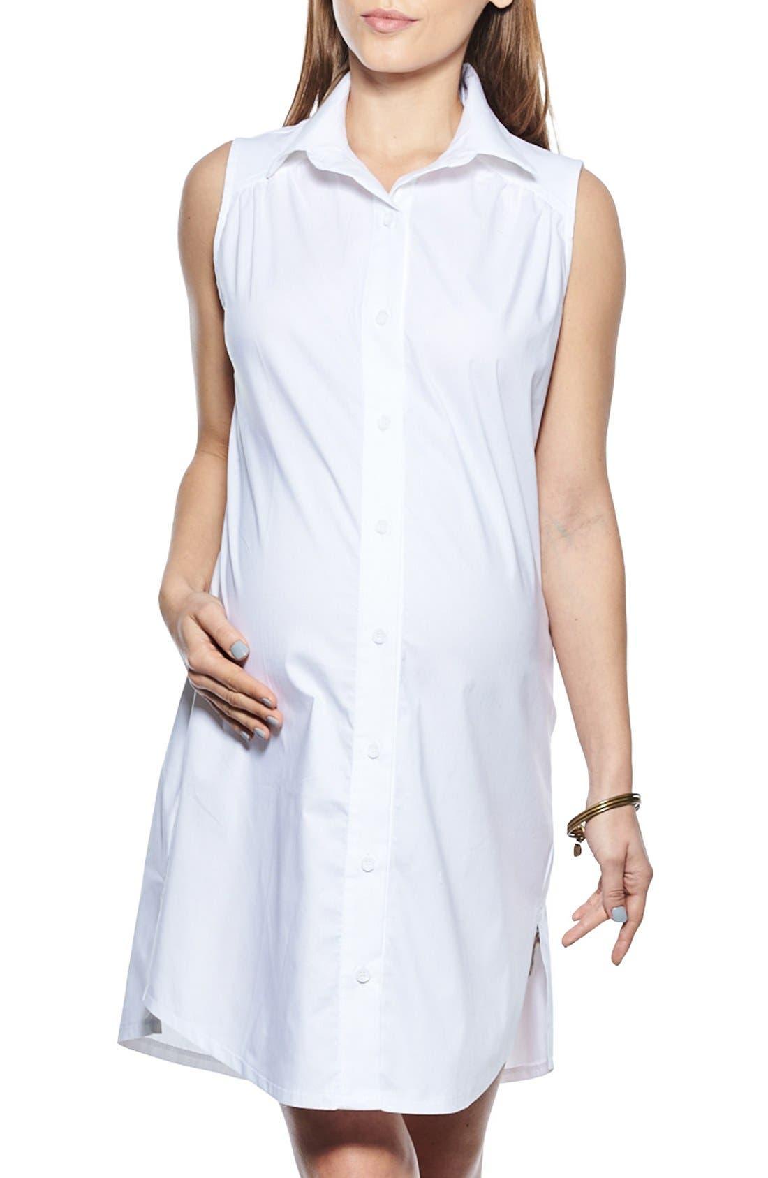 Imanimo Button Down Maternity Shirtdress