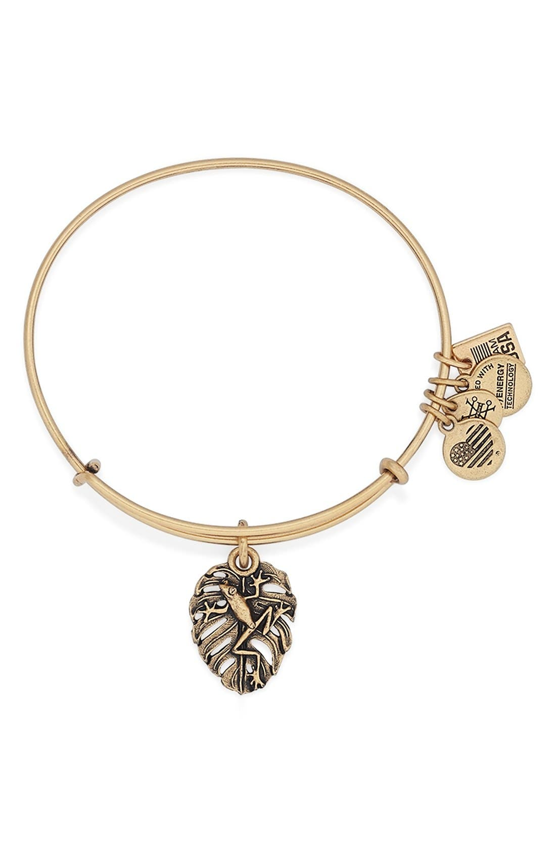 Main Image - Alex and Ani 'Team USA - Frog' Expandable Wire Bangle