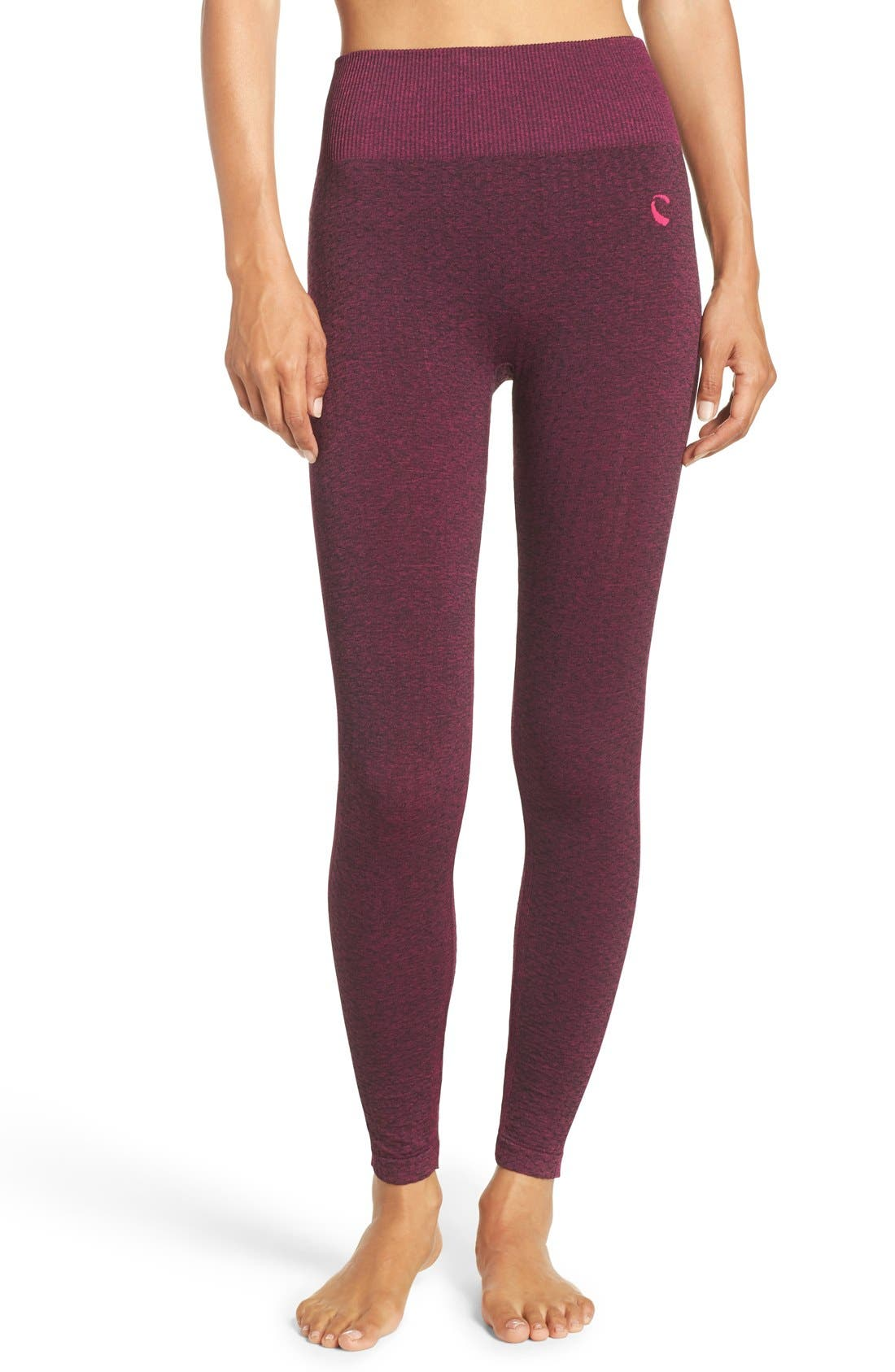 Climawear 'Trail Blazer' High Waist Leggings