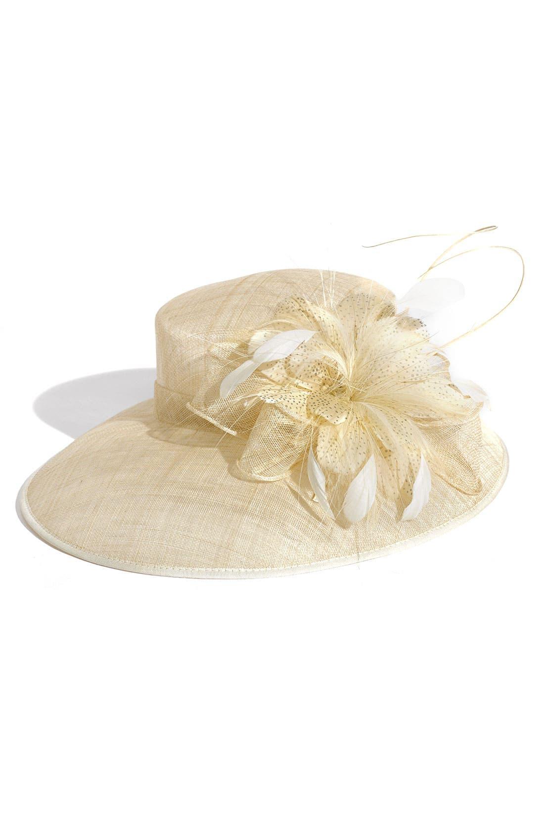 Alternate Image 1 Selected - Nordstrom Collection Wide Brim Hat