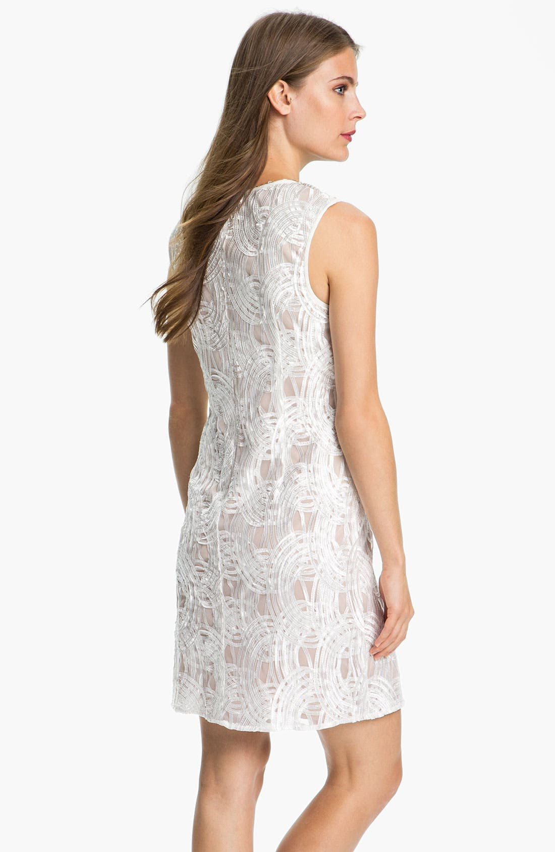 Alternate Image 2  - Adrianna Papell Embellished Neck Embroidered Tulle Dress