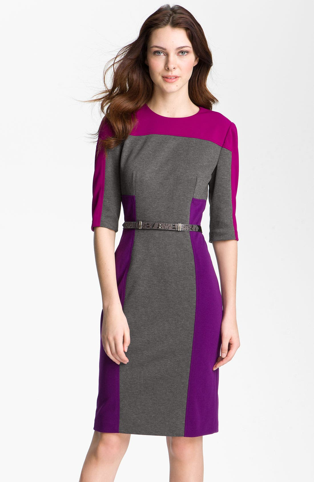 Alternate Image 1 Selected - Maggy London Colorblock Ponte Sheath Dress (Petite)