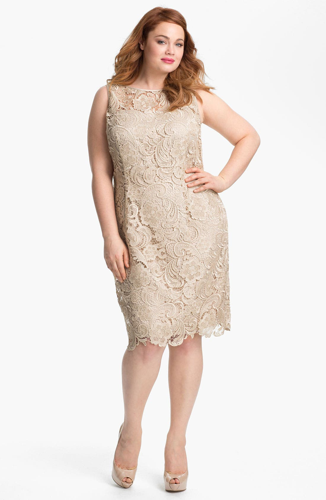 Main Image - Adrianna Papell Sleeveless Lace Dress (Plus Size)