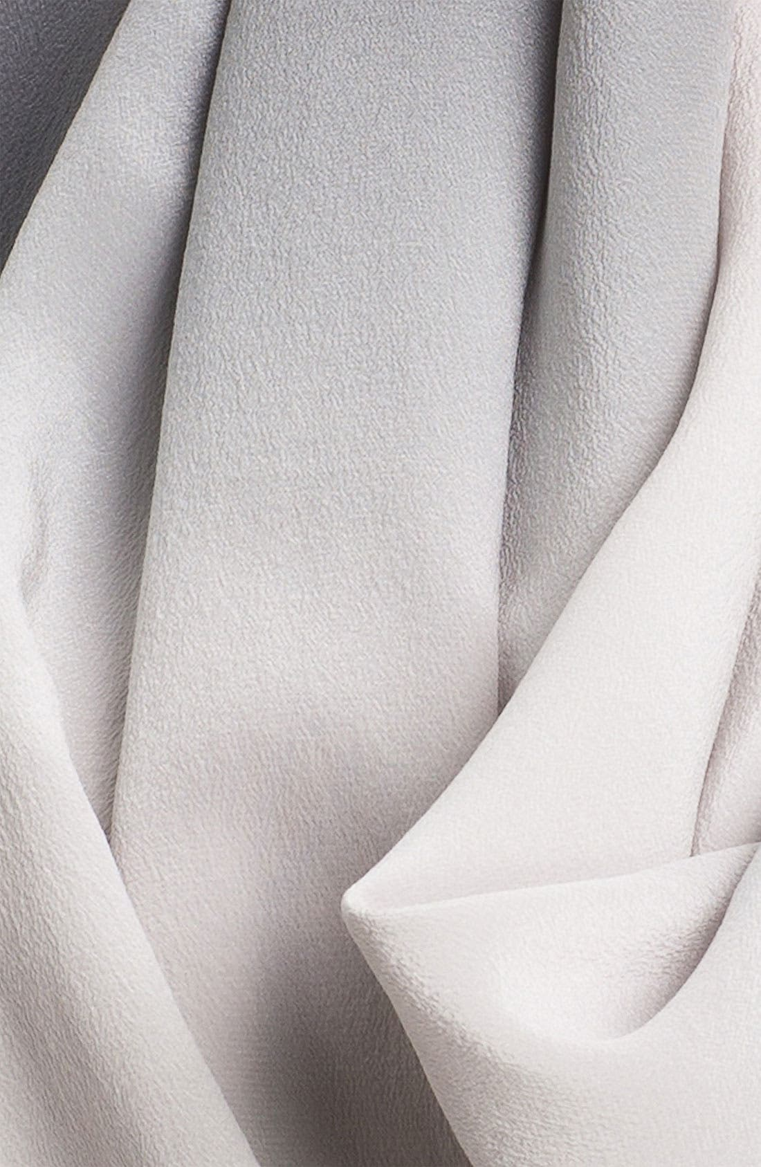 Alternate Image 3  - Eileen Fisher Ombré Silk Scarf