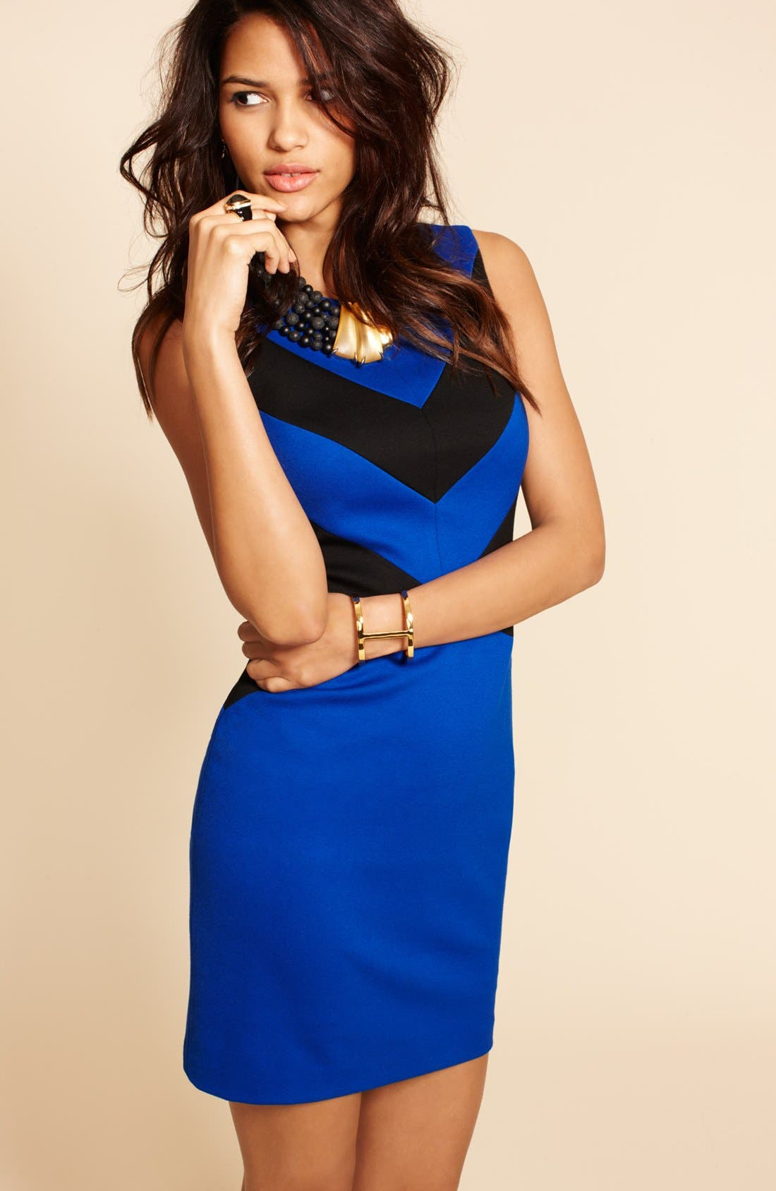 Alternate Image 4  - Cynthia Steffe 'Elizabeth' Sleeveless Colorblock Sheath Dress