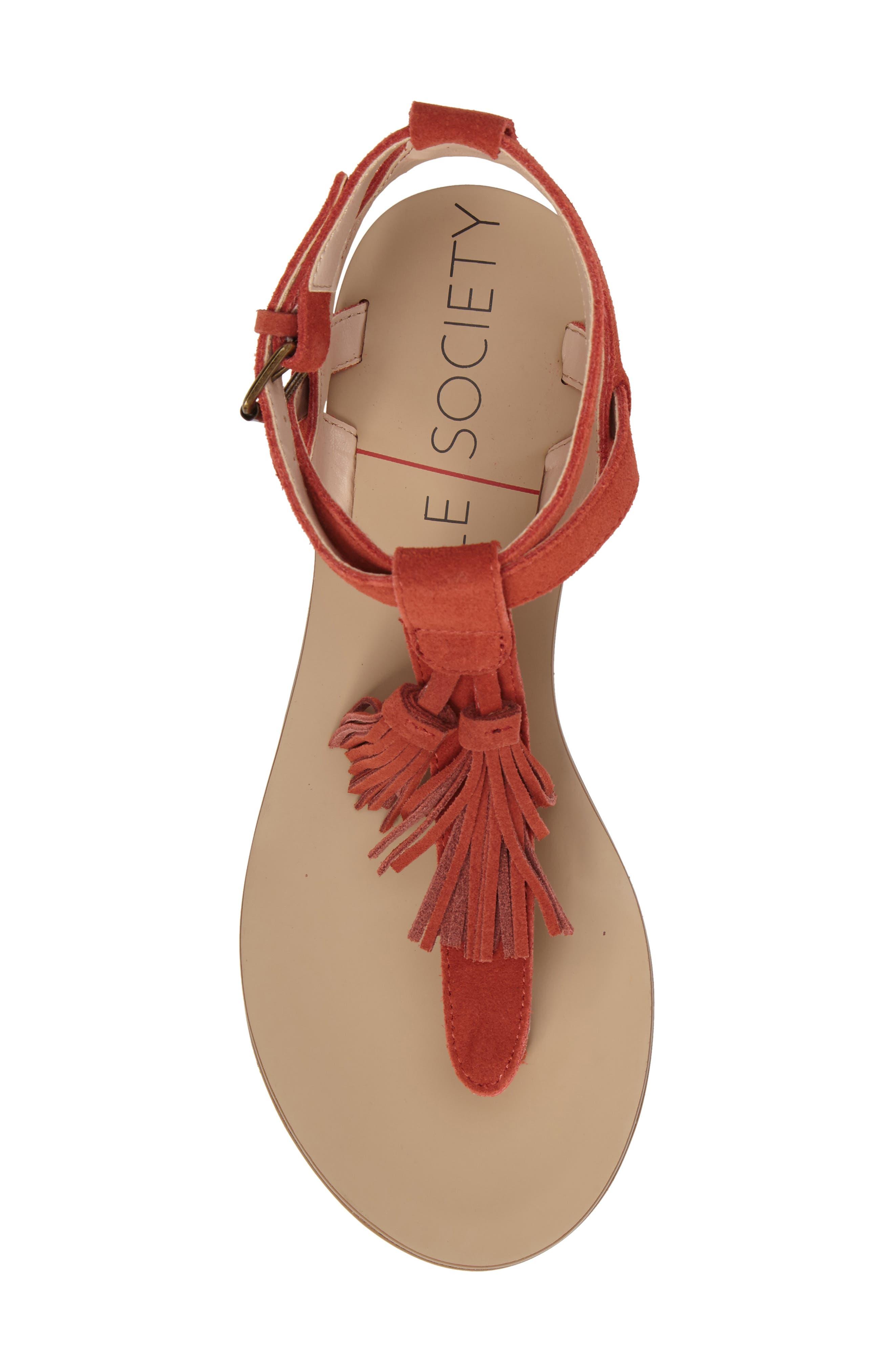 Alternate Image 5  - Sole Society 'Pandora' Fringe Sandal (Women)