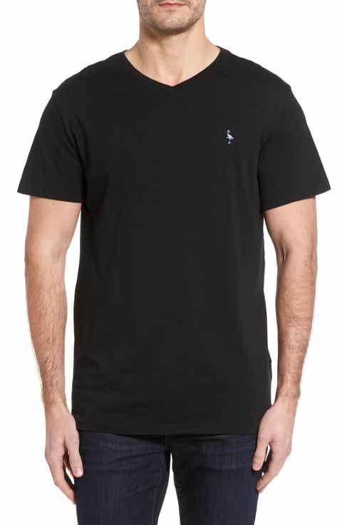 TailorByrd V-Neck T-Shirt (Big)