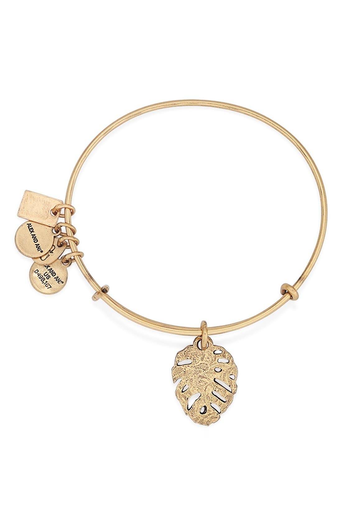 Alternate Image 2  - Alex and Ani 'Team USA - Frog' Expandable Wire Bangle