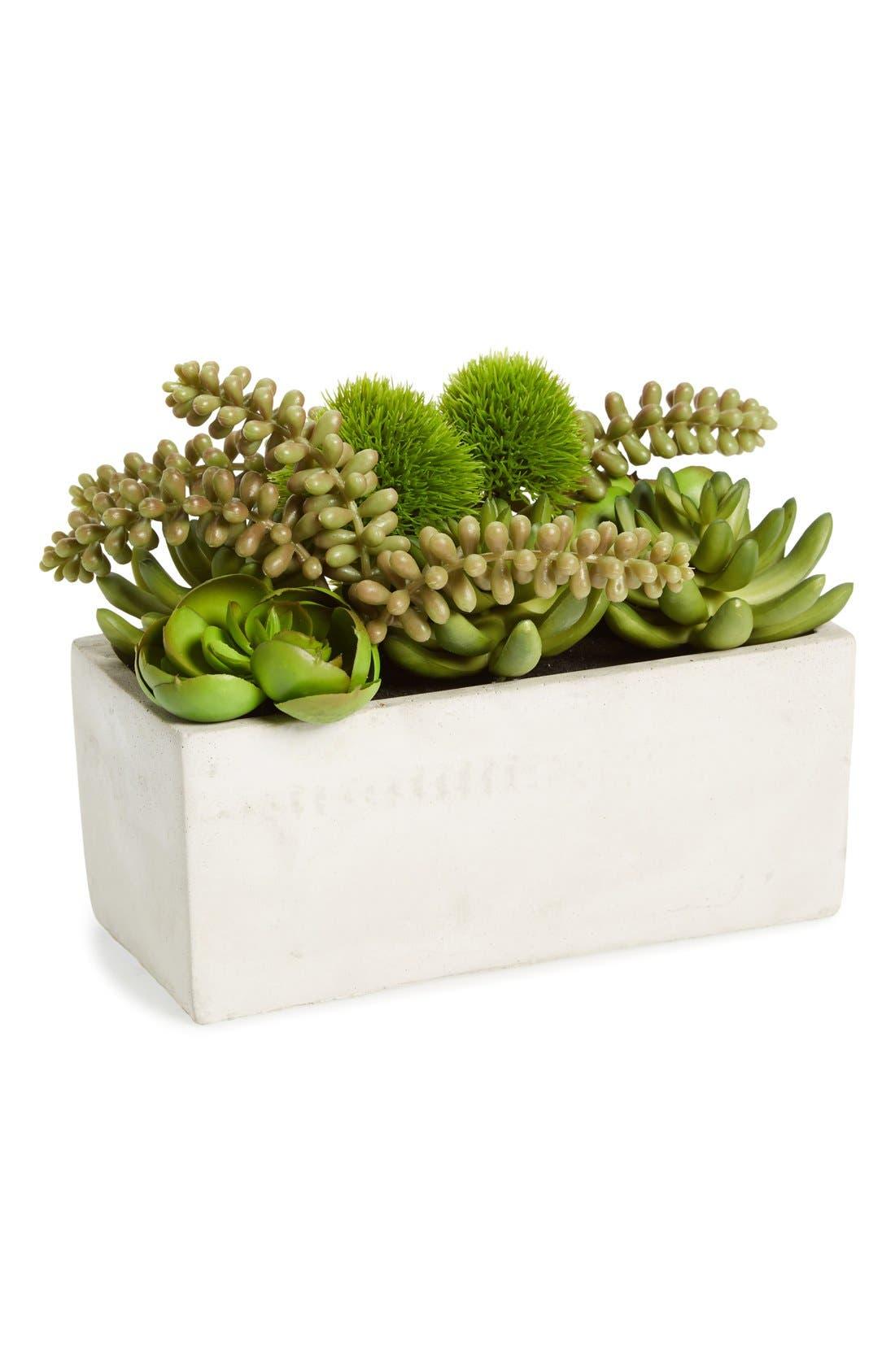 Main Image - Sage & Co. Faux Succulent Garden in Cement Pot