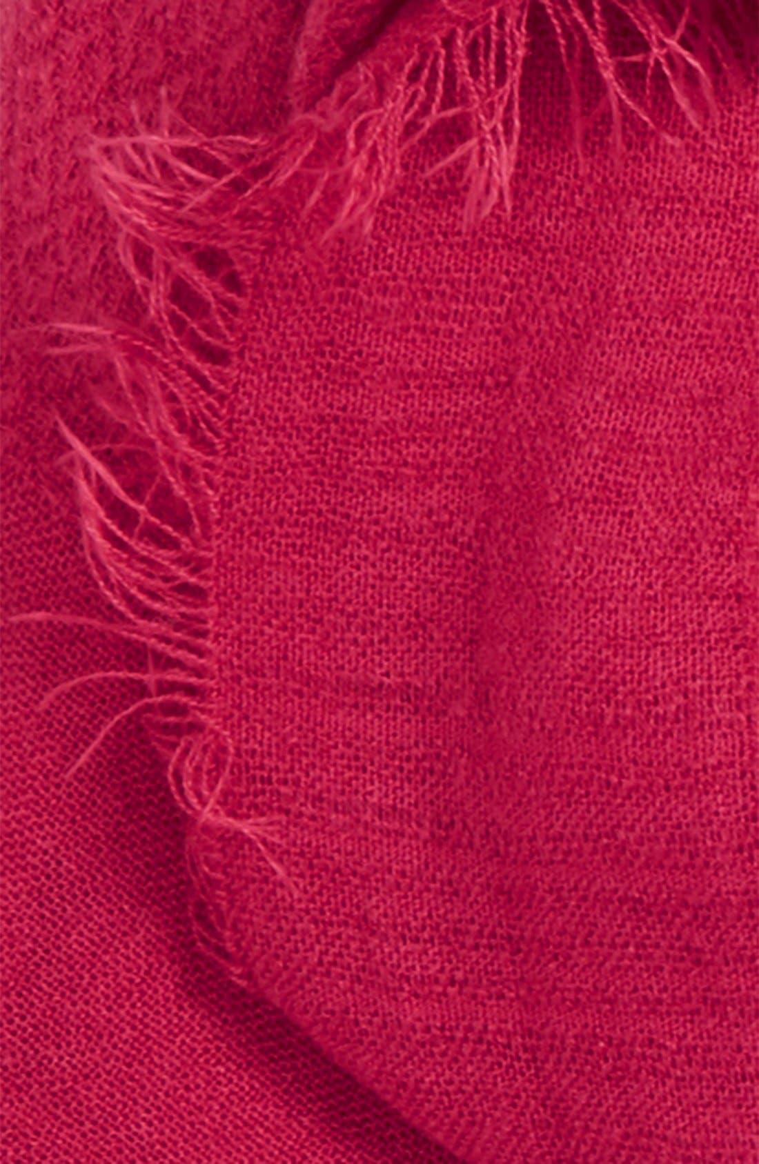 Alternate Image 3  - Hinge Textured Scarf