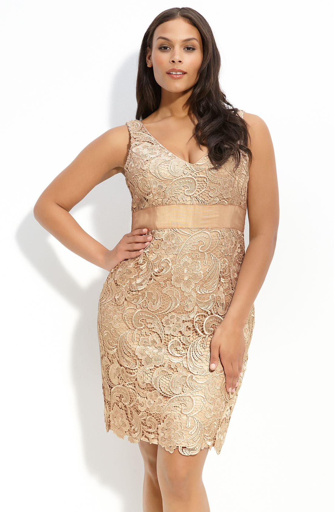 Main Image - Adrianna Papell Sleeveless Lace Dress (Plus)