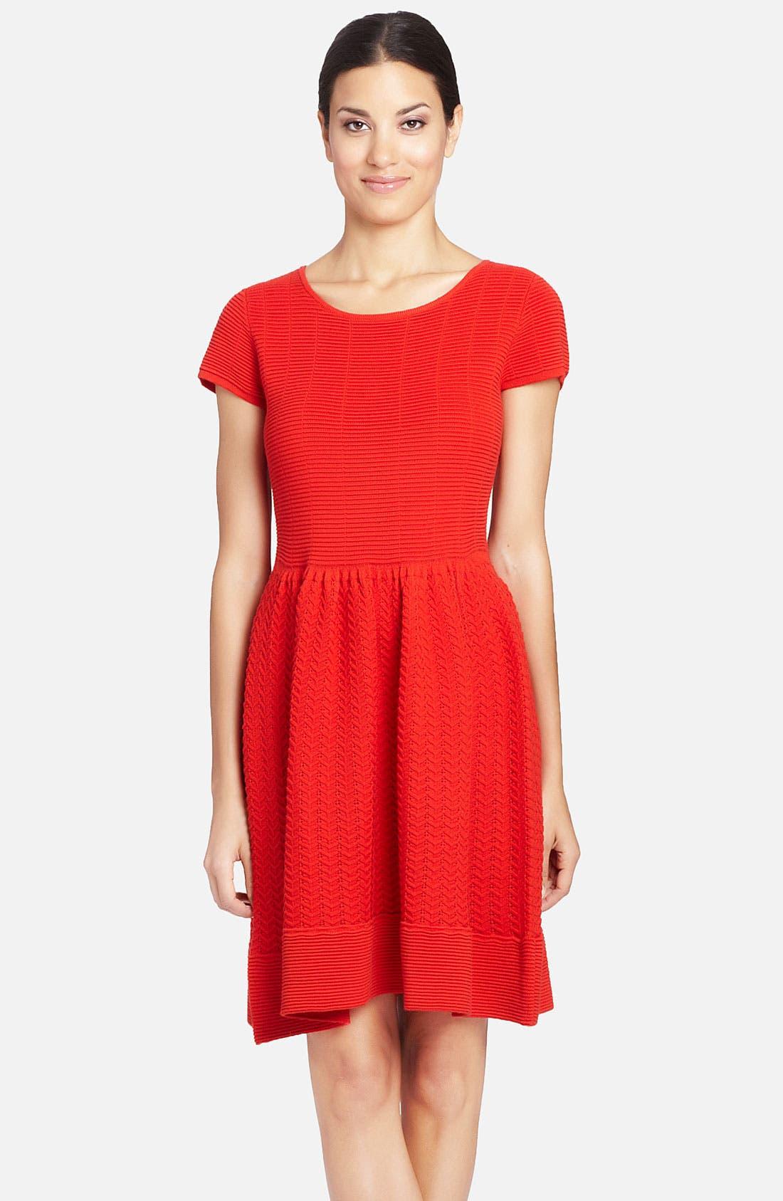 Main Image - Cynthia Steffe 'Marley' Knit Merino Wool Fit & Flare Dress