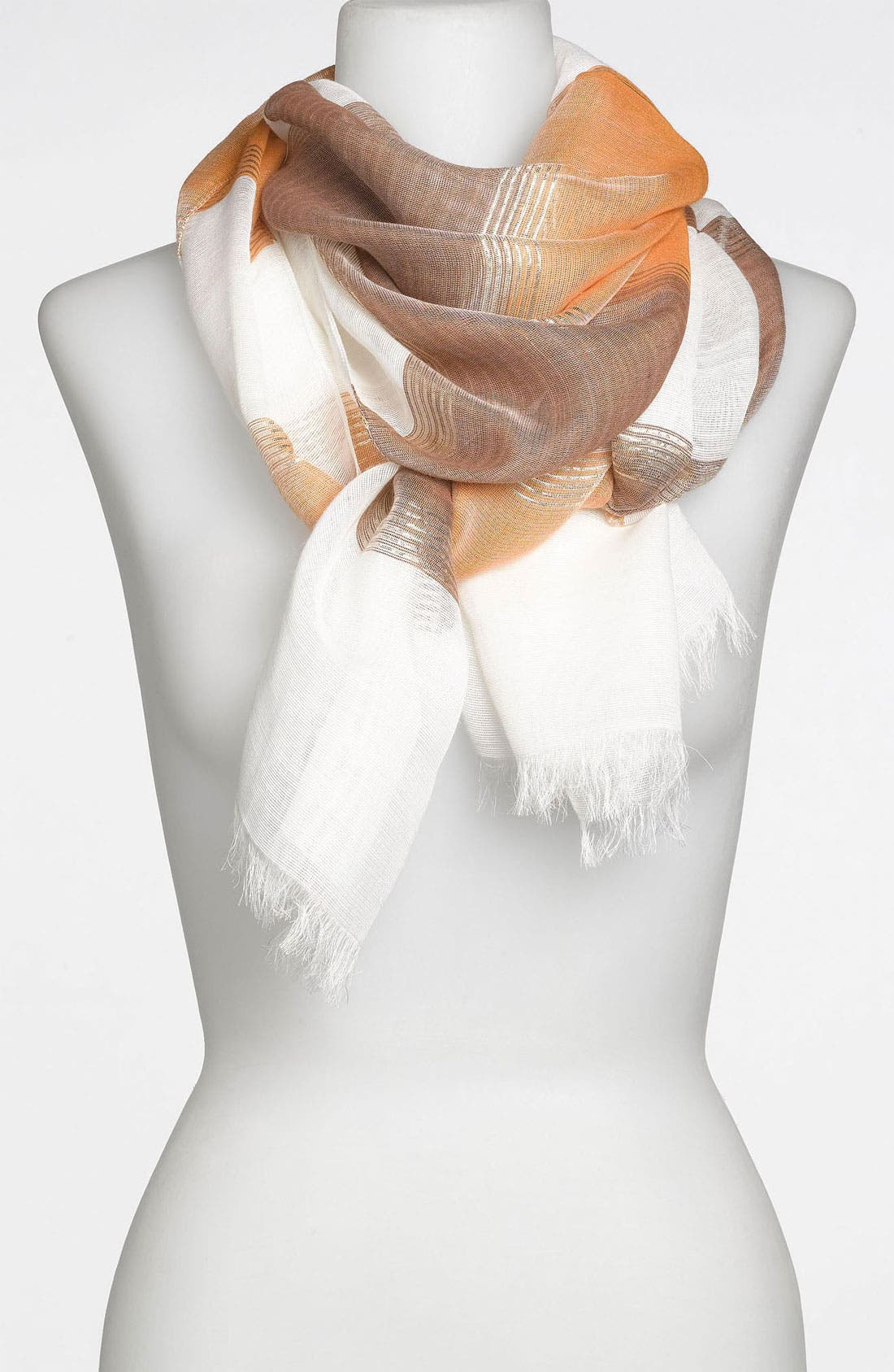 Alternate Image 1 Selected - Nordstrom Metallic Stripe Scarf