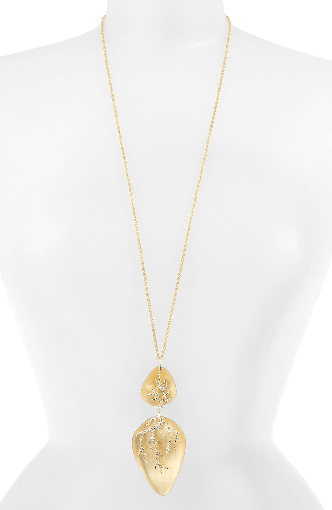Alternate Image 1 Selected - Alexis Bittar 'Ophelia' Long Pendant Necklace