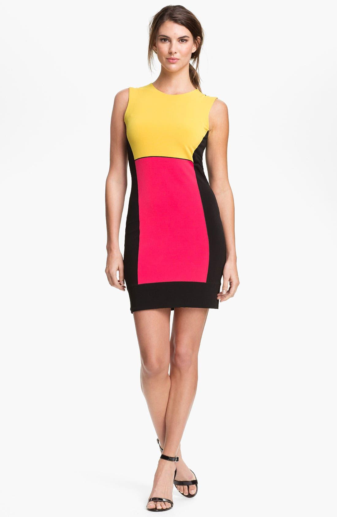 Main Image - Eva Varro 'Tribeca' Colorblock Dress