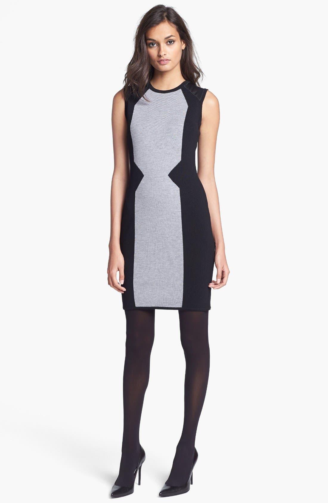 Alternate Image 1 Selected - Milly Merino Wool Sweater Dress