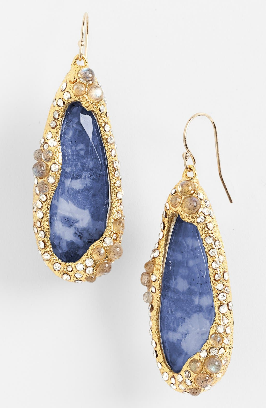 Alternate Image 1 Selected - Alexis Bittar 'Elements - Jardin de Papillon' Teardrop Earrings