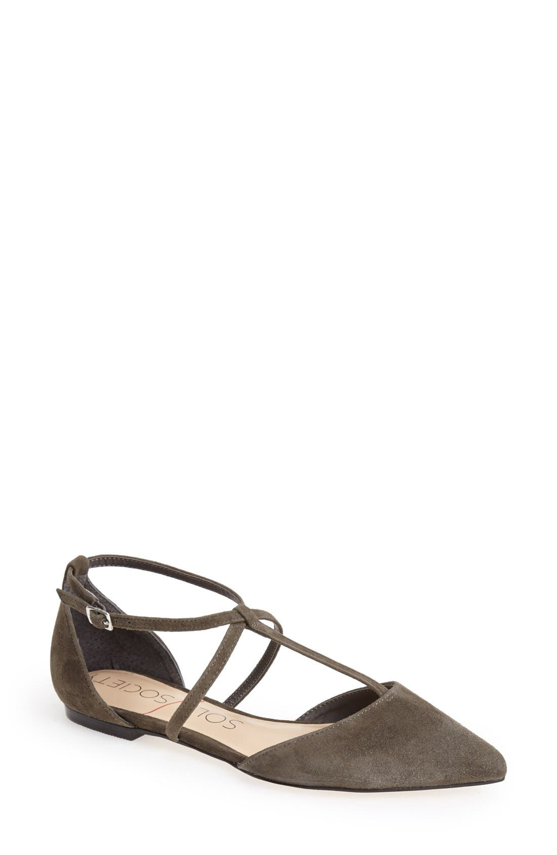 Alternate Image 1 Selected - Sole Society 'Chandler' Pointy Toe Flat (Women)