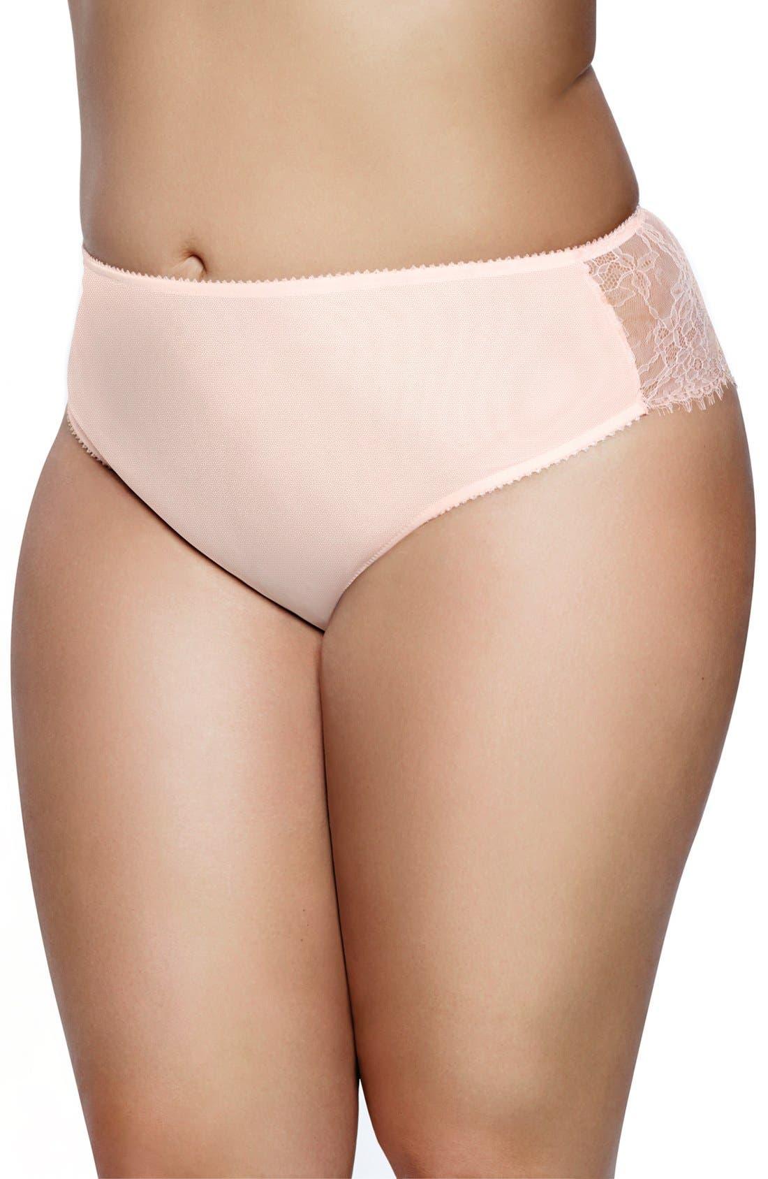 Alternate Image 1 Selected - Ashley Graham 'Basic' Lace Back Briefs(Plus Size)