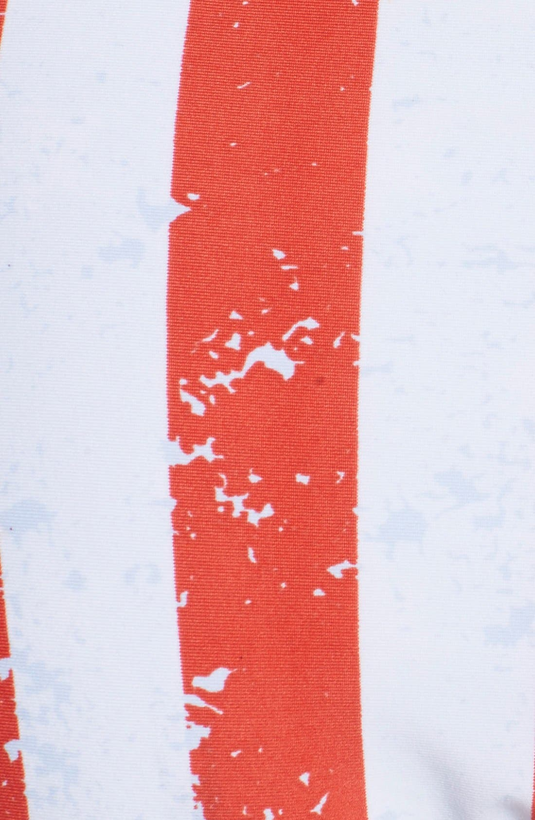 Alternate Image 6  - The Bikini Lab 'American Flag - Red, White & You' Reversible Bikini Bottoms