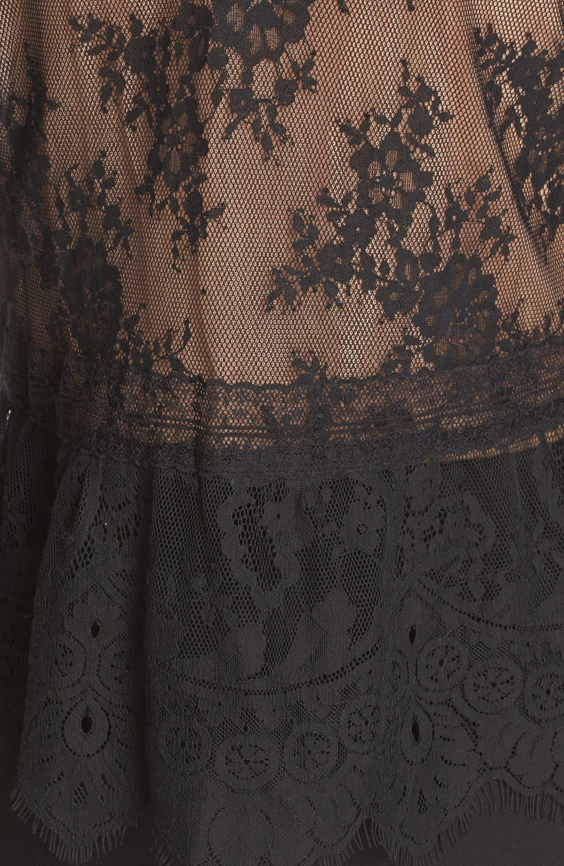 Alternate Image 5  - Tracy Reese Chantilly Lace Victorian Blouse