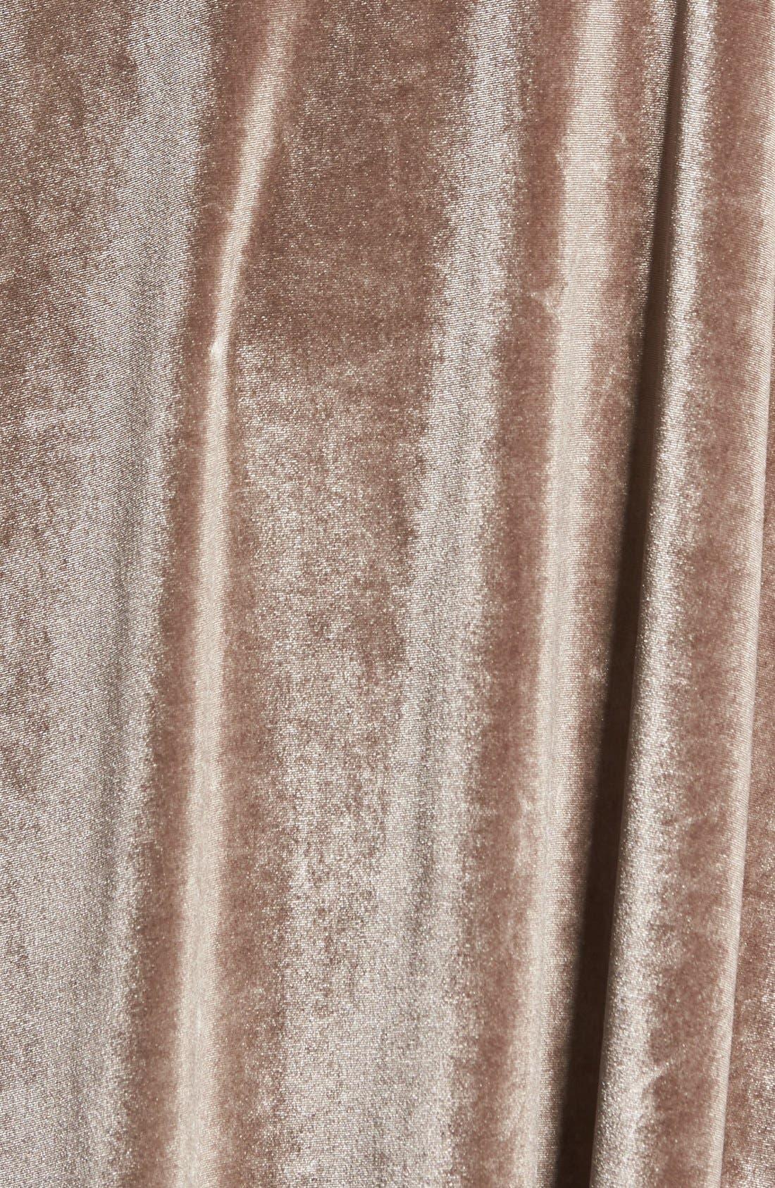 Alternate Image 5  - Ten Sixty Sherman Velvet Camisole Dress