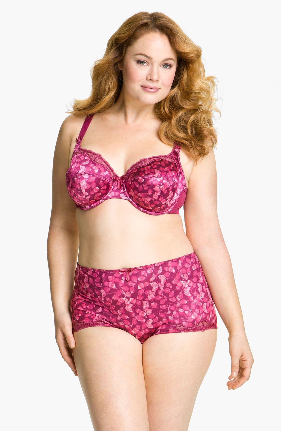 Alternate Image 4  - Elomi 'Briony' Briefs (Plus Size)