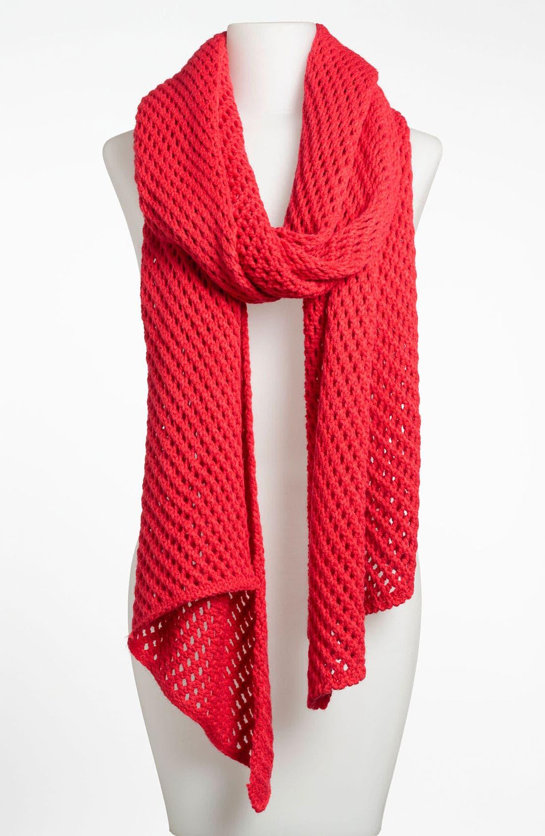 Alternate Image 1 Selected - Lulu Net Knit Scarf