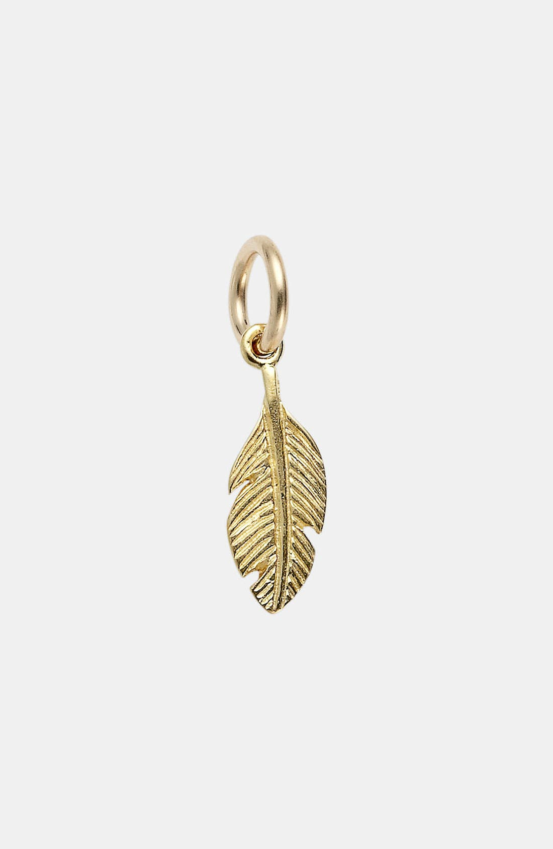 Alternate Image 1 Selected - Dogeared 'Create - Mother Earth' Feather Charm