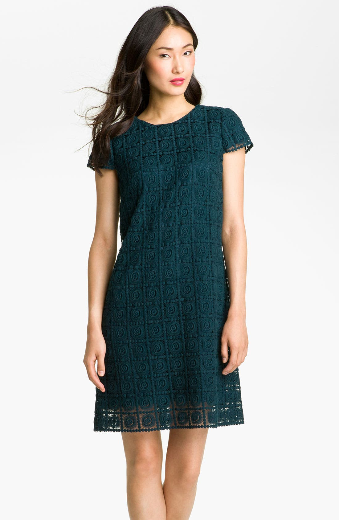Alternate Image 1 Selected - Suzi Chin for Maggy Boutique Crochet Shift Dress (Petite)