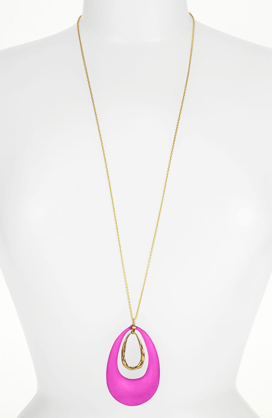 Alternate Image 1 Selected - Alexis Bittar 'Lucite®' Long Pendant Necklace