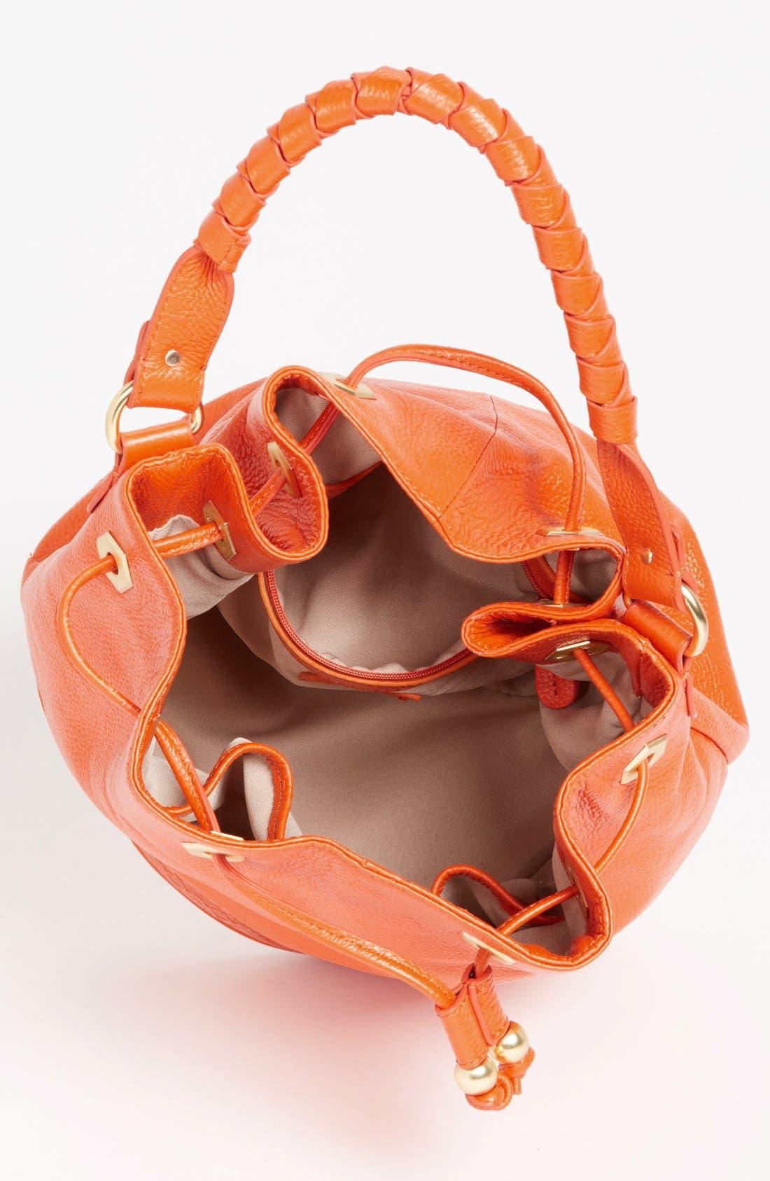 Alternate Image 3  - Sloane and Alex 'Sophia' Bucket Bag