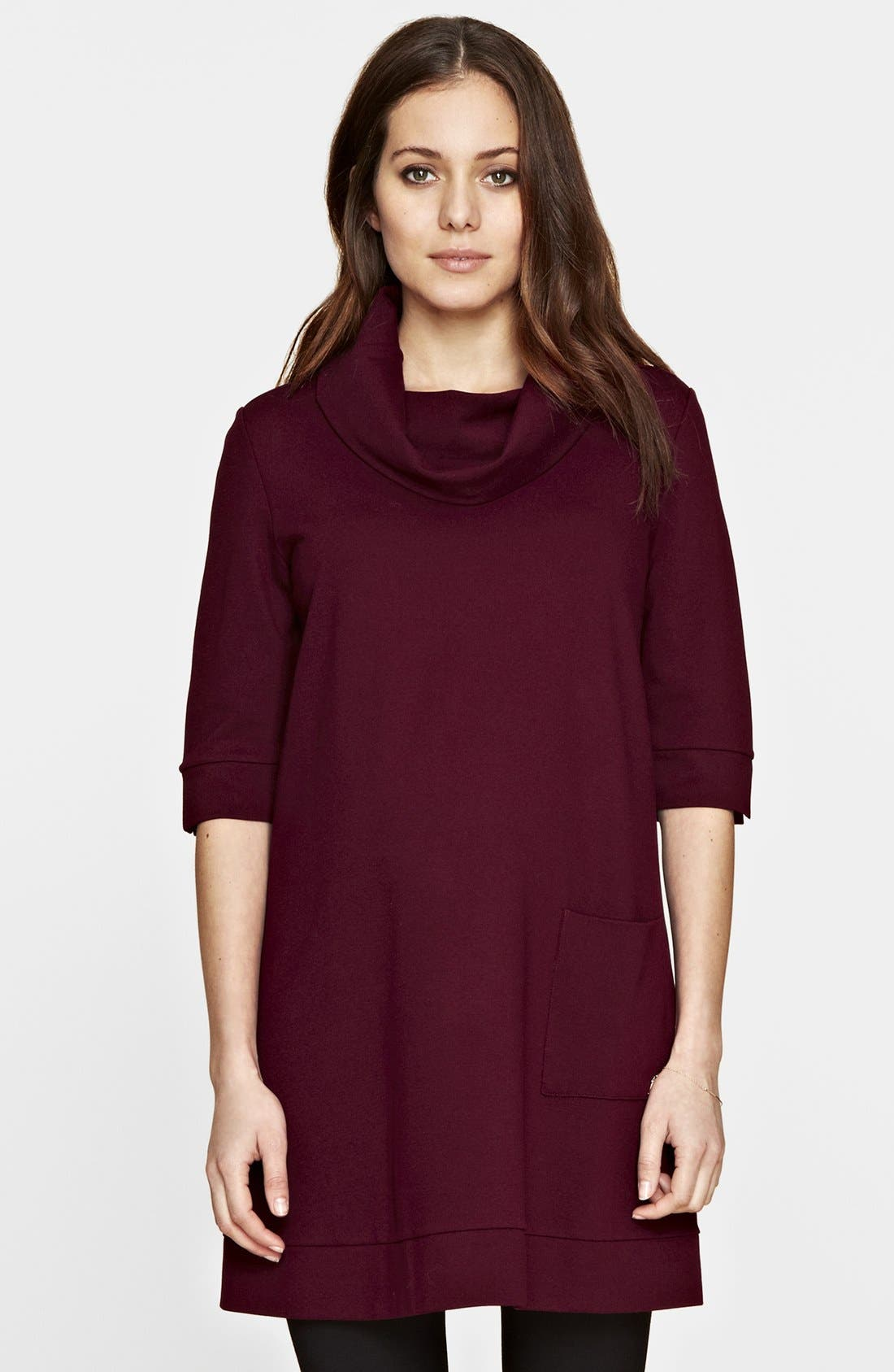 Alternate Image 1 Selected - Isabella Oliver Jersey Maternity Tunic