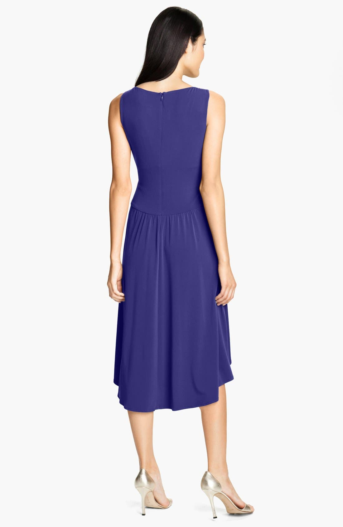 Alternate Image 2  - Ivy & Blu Pleated Front V-Neck Dress
