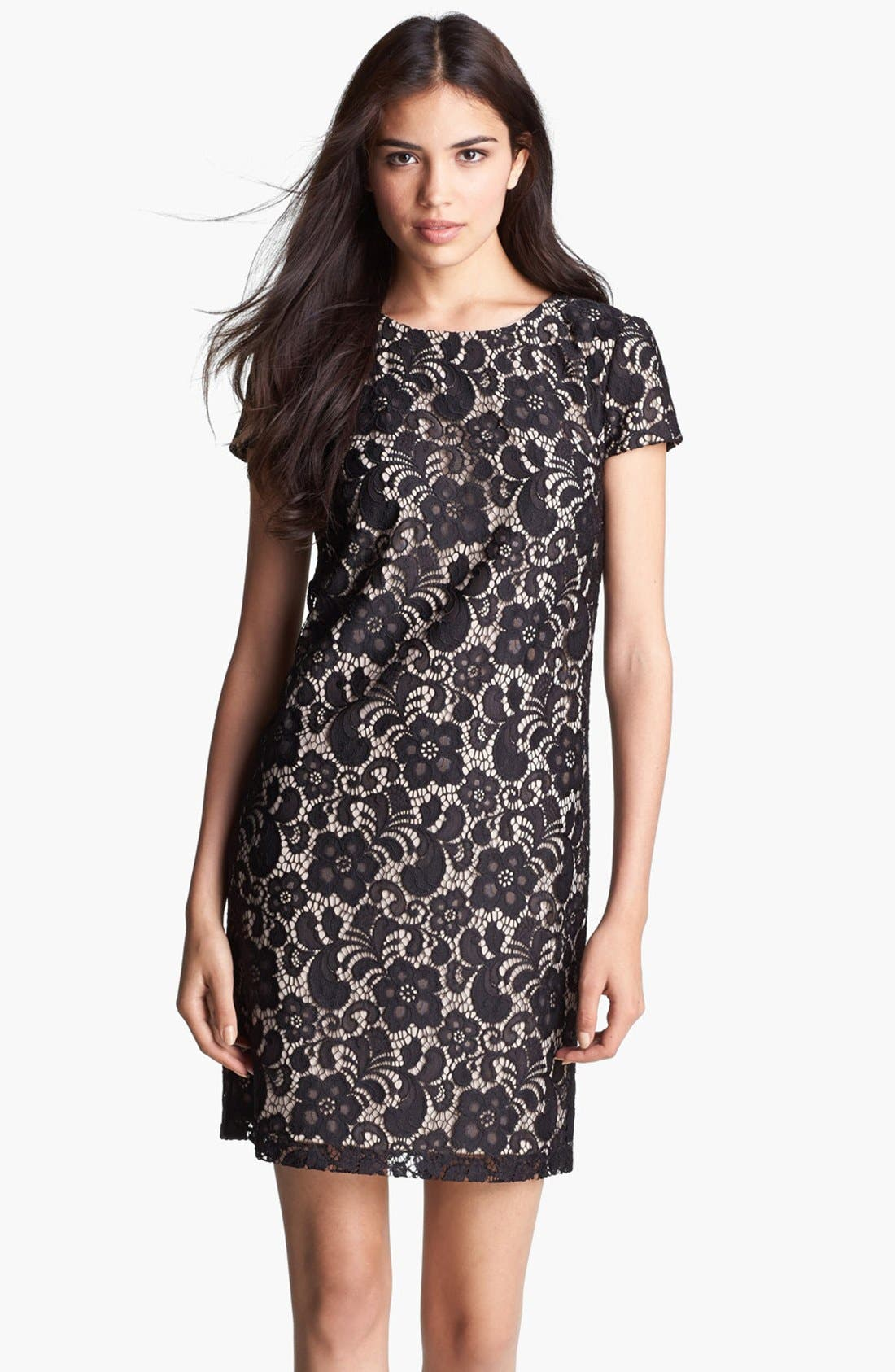 Main Image - Ivy & Blu Lace Shift Dress