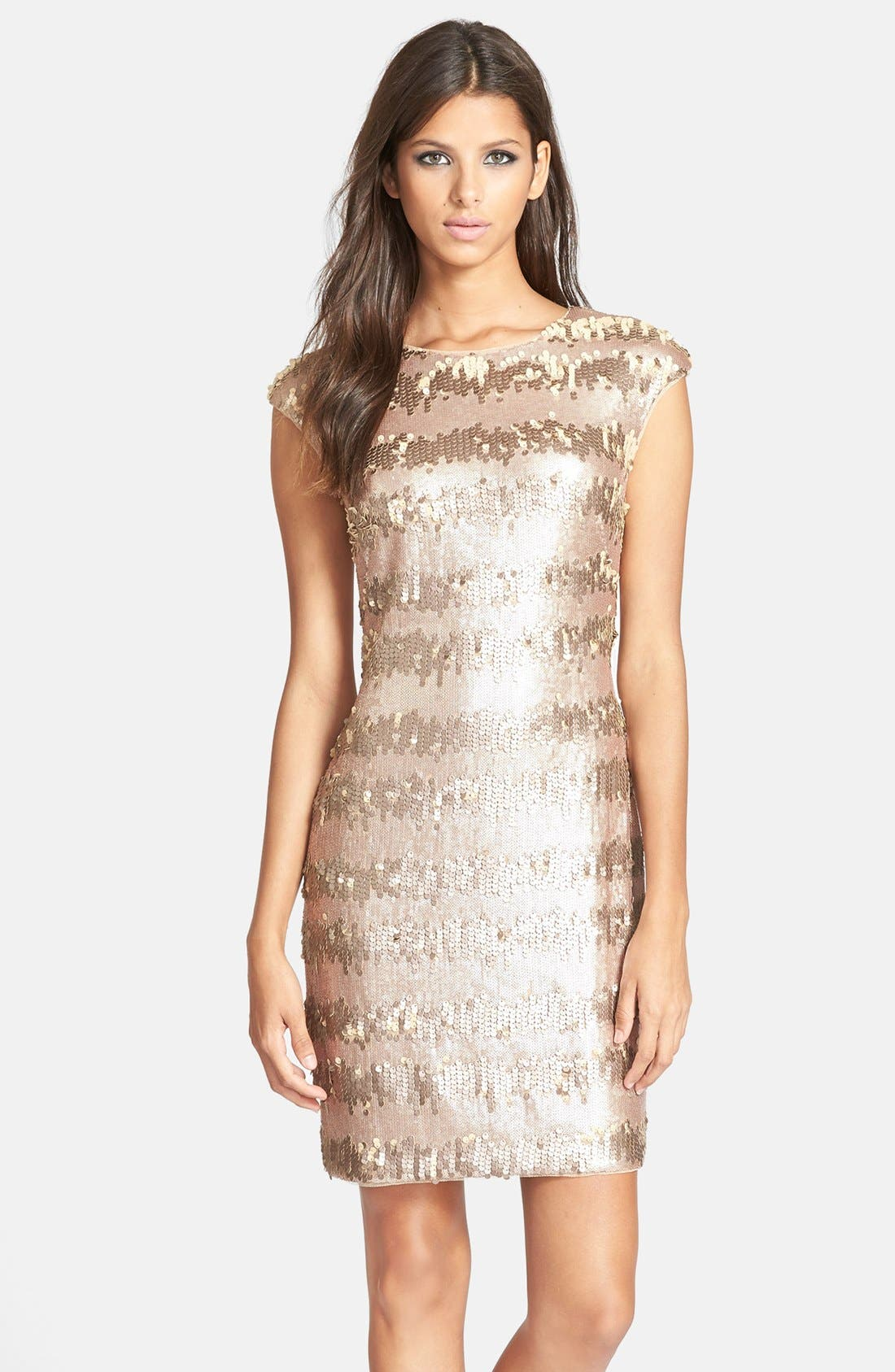 Alternate Image 1 Selected - Adrianna Papell Sequin Sheath Dress