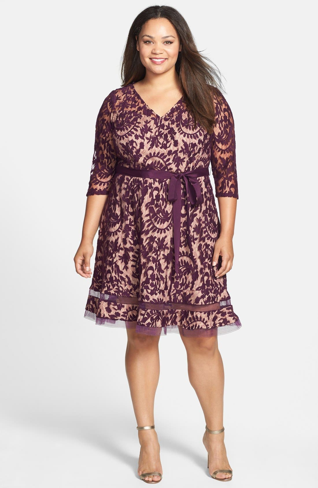 Alternate Image 1 Selected - Adrianna Papell Lace Fit & Flare Dress (Plus Size)