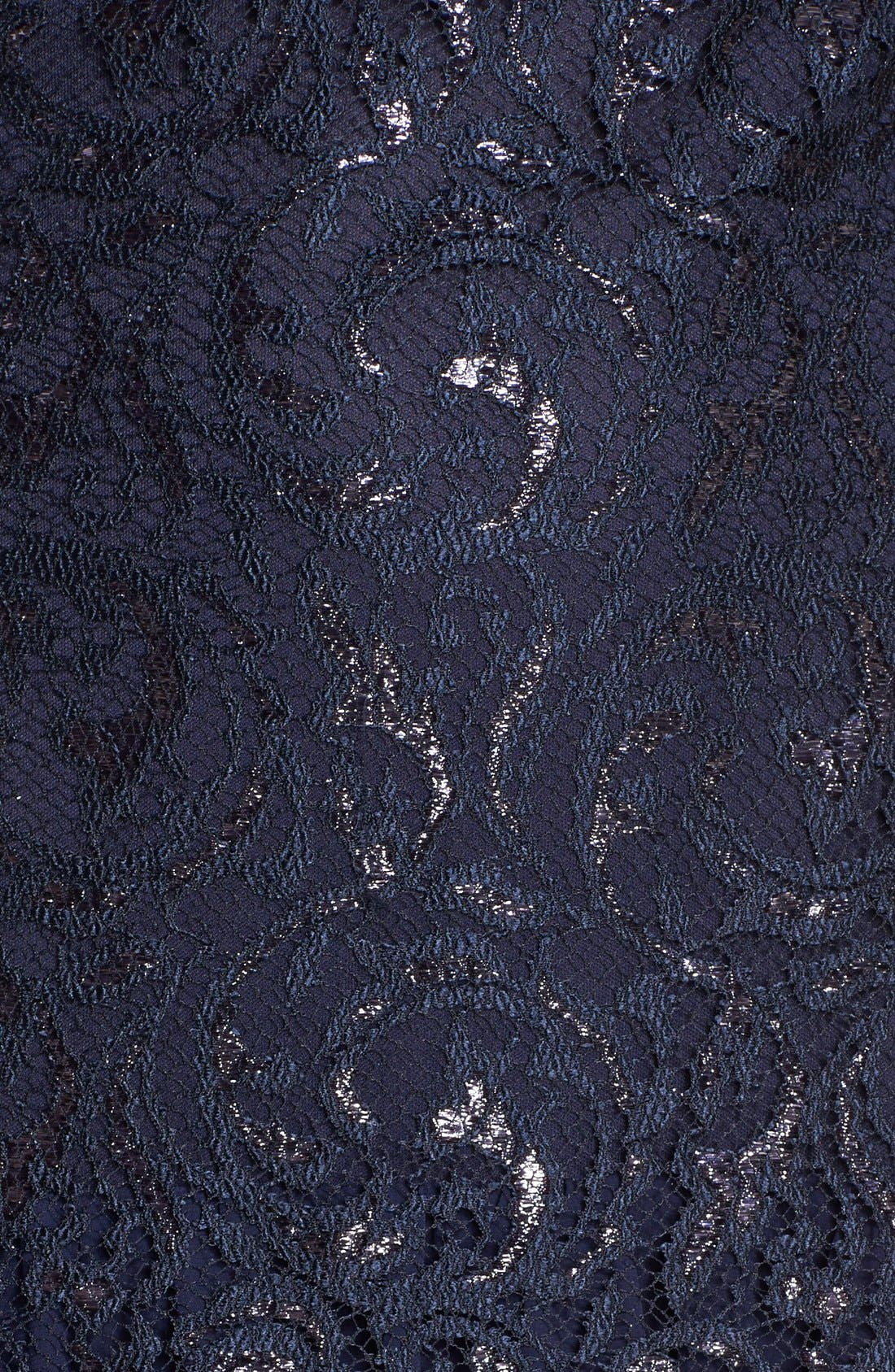 Alternate Image 3  - Alex Evenings Metallic Lace & Chiffon Gown