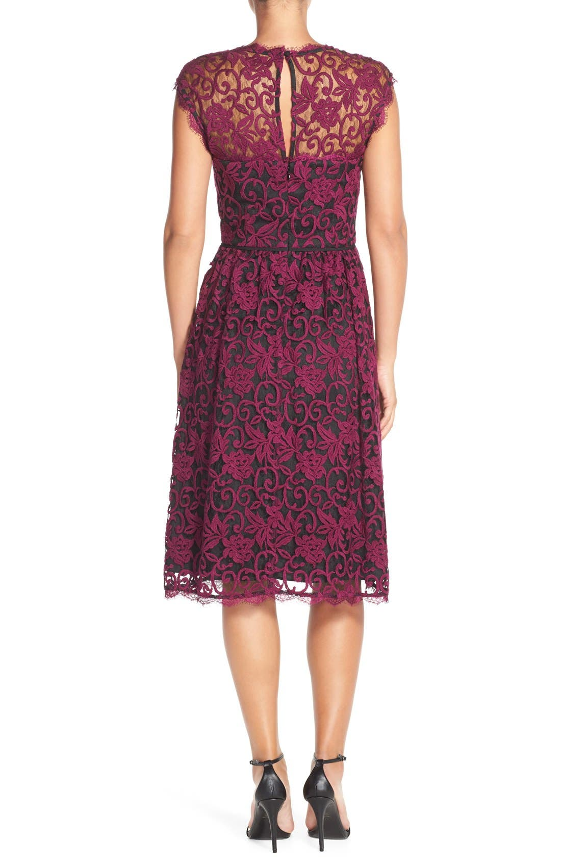 Alternate Image 2  - Adrianna PapellIllusion Lace Fit & Flare Dress