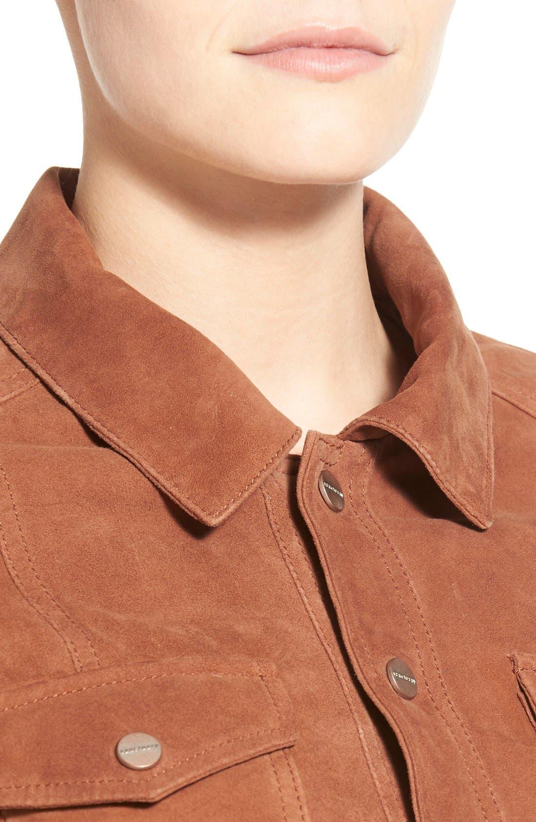 Alternate Image 4  - Sanctuary 'Anita' Suede Jacket