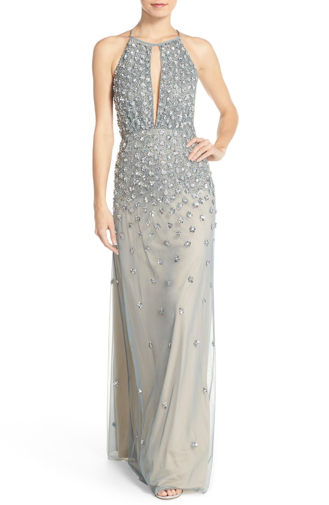 Alternate Image 1 Selected - Adrianna Papell Embellished Tulle Column Gown