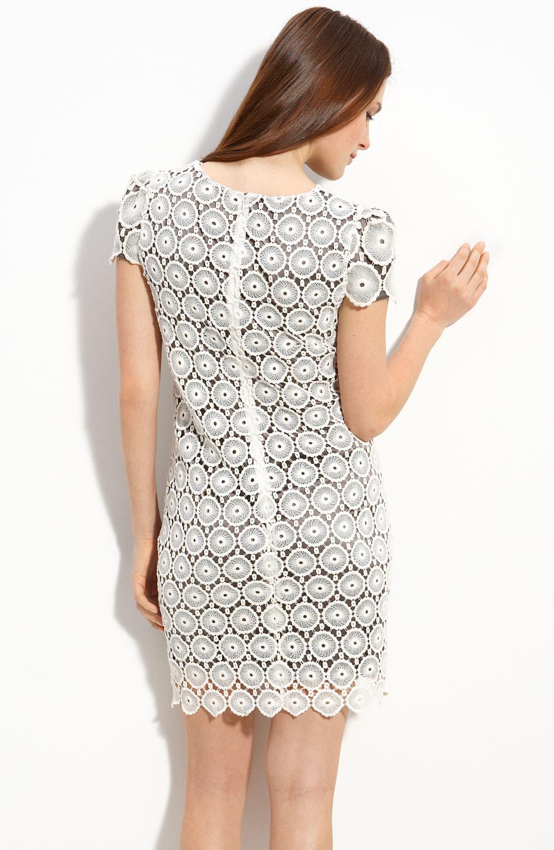 Alternate Image 2  - Suzi Chin for Maggy Boutique Lace Shift Dress