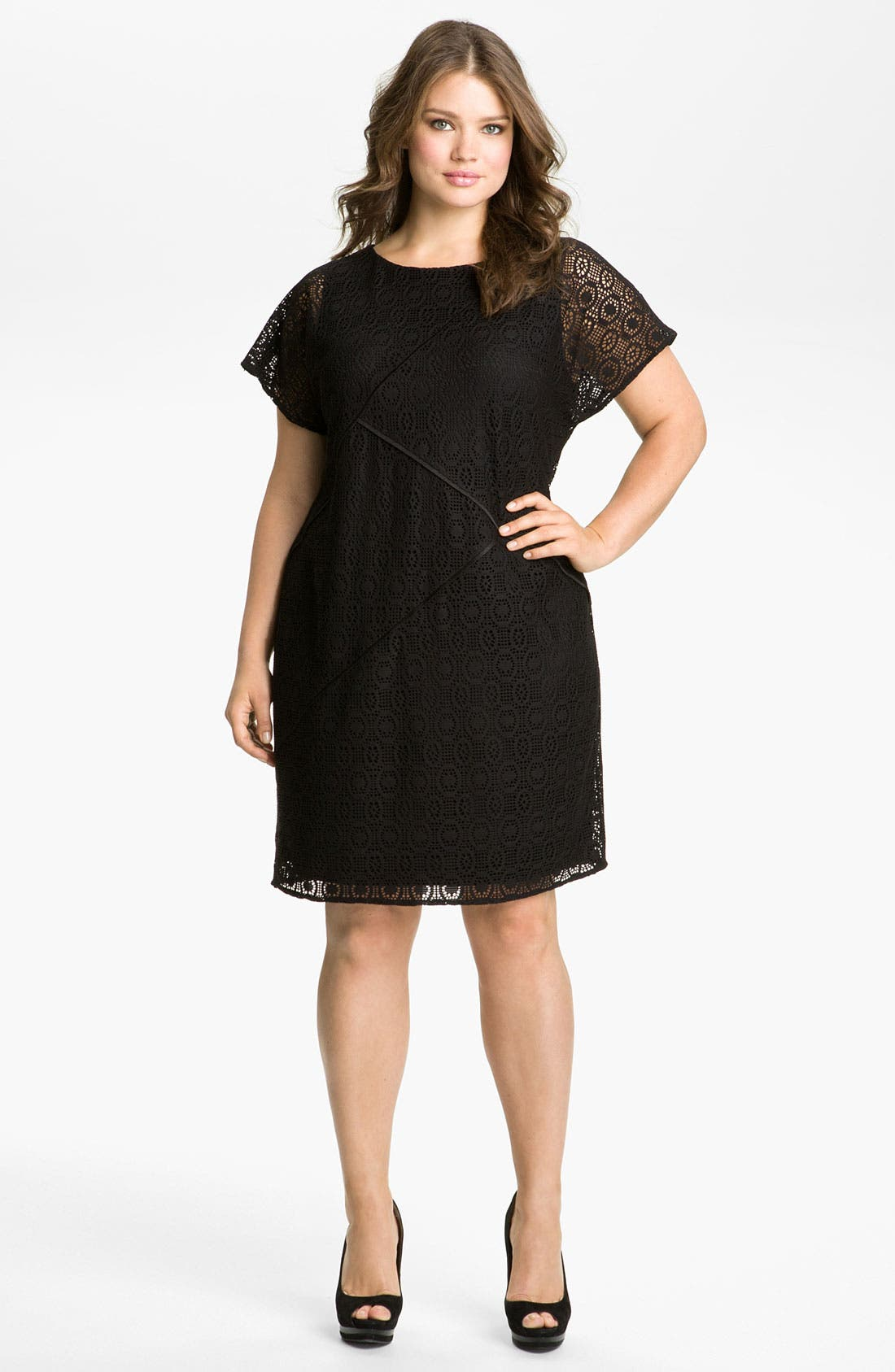 Main Image - Adrianna Papell Seamed Lace Dress (Plus)