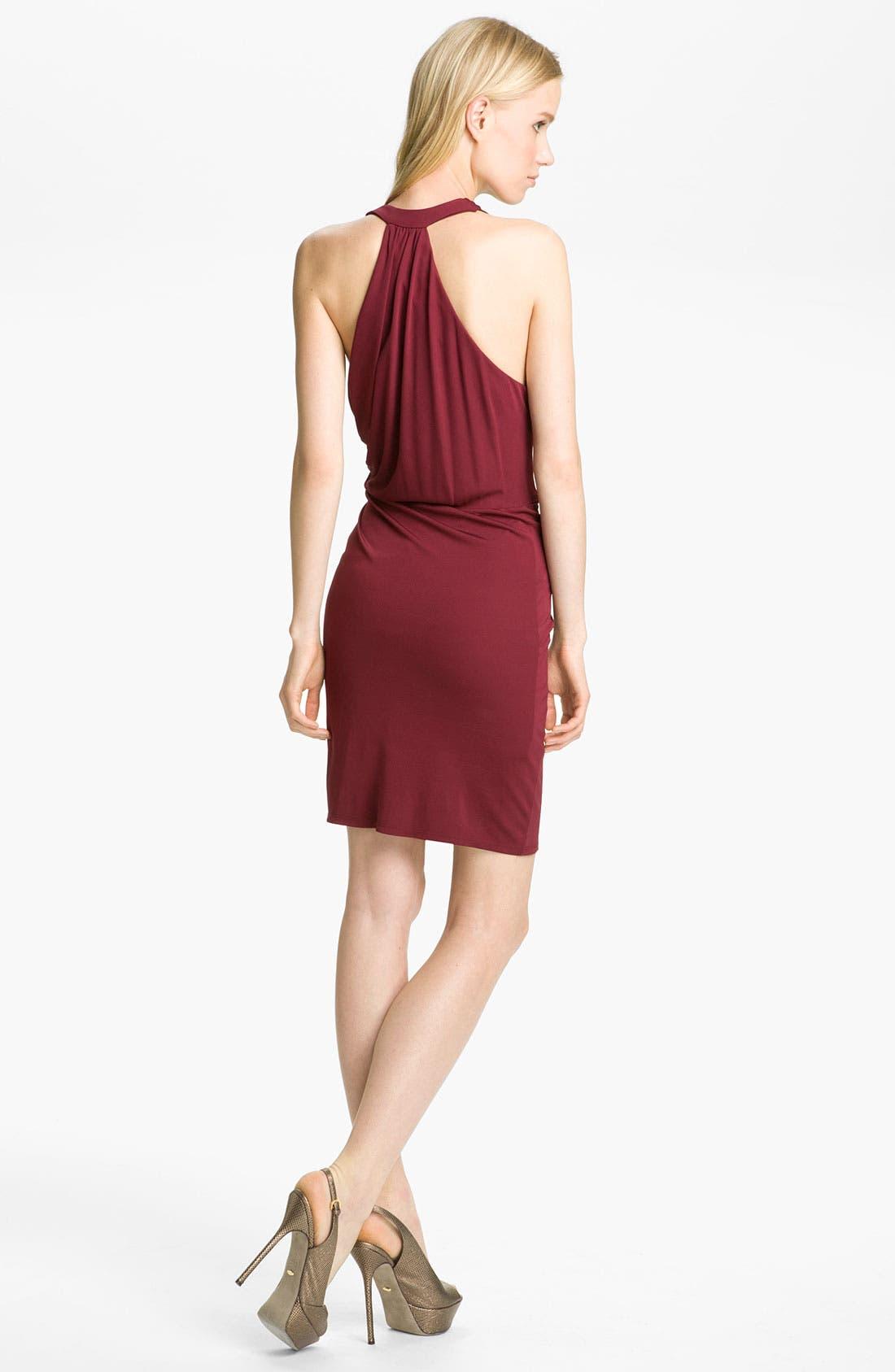 Alternate Image 2  - Haute Hippie Draped Jersey Dress