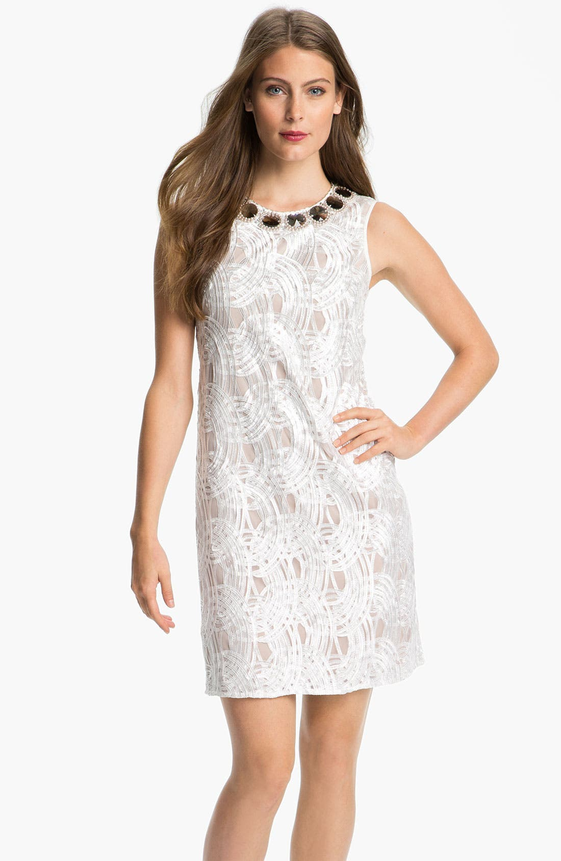 Alternate Image 1 Selected - Adrianna Papell Embellished Neck Embroidered Tulle Dress