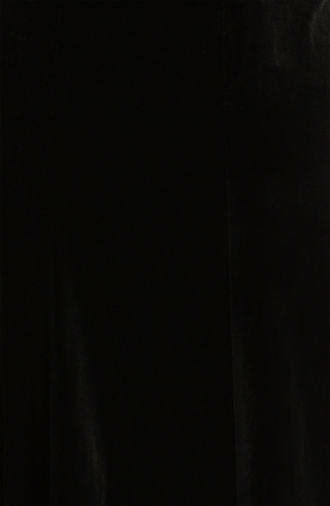 Alternate Image 3  - Alex Evenings Velvet Skirt (Plus)